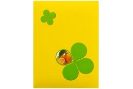 Fotoalbum 10x15/100 SIGNAL žltý