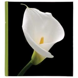 Klasický fotoalbum Botanics 29x32/100s. zelený